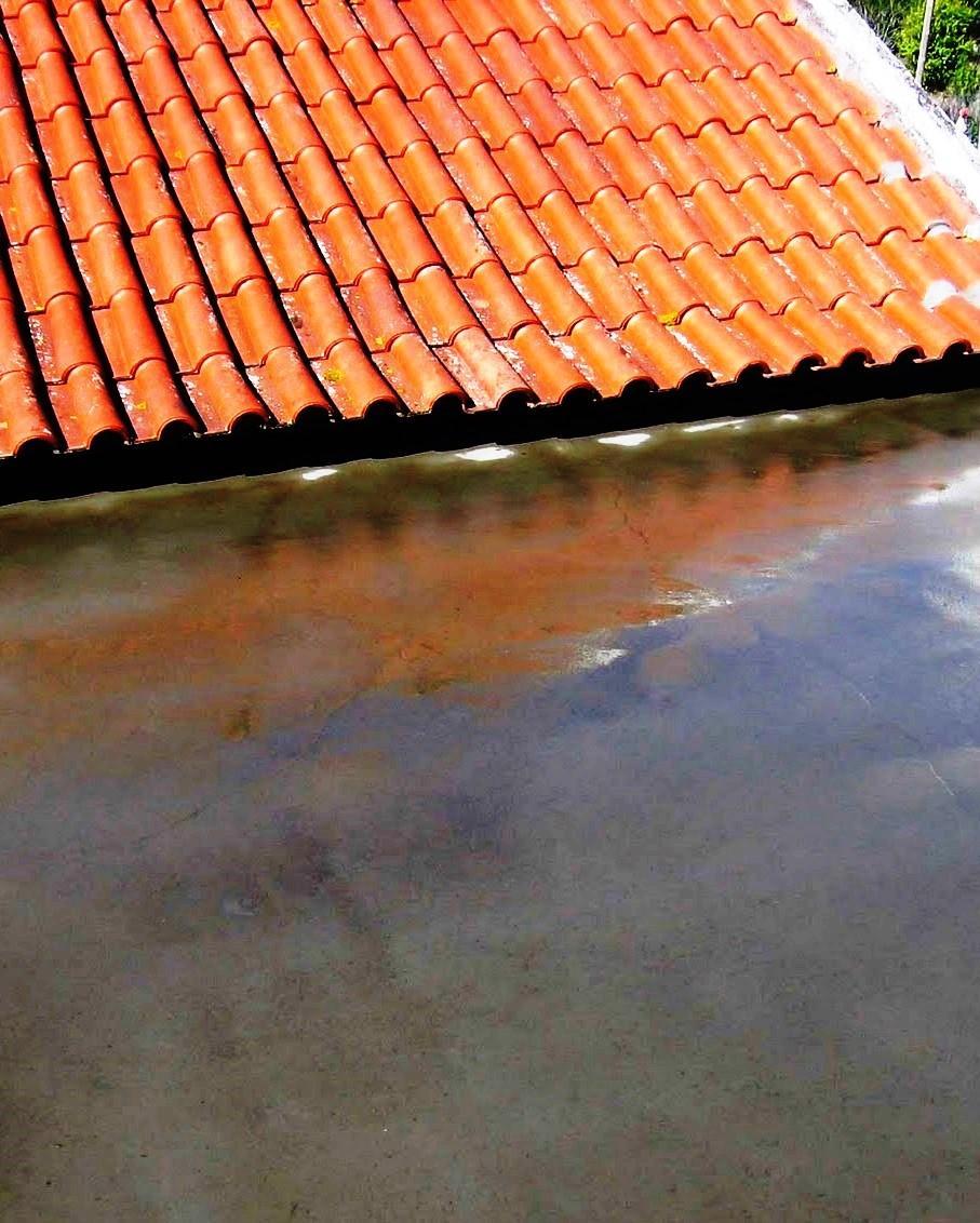 Las terrazas son las cubiertas que presentan mayores exigencias constructivas. Debido a que tienen un grado de pendiente muy inferior a una cubierta inclinada, se pueden desarrollar enfermedades debido a la acumulación de agua en determinadas zonas de la terraza.